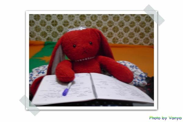 紅兔兔整理筆記