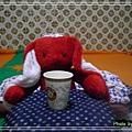 紅兔兔的咖啡time