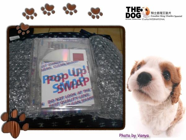 SMAP Pop up