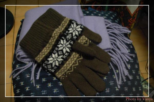 冬天必備物,圍巾和手套
