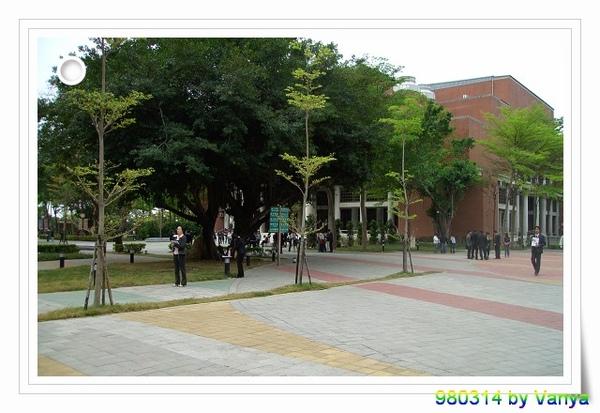 中山大學一隅
