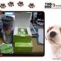 980613系友會禮品及TK給的小東西