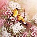 C39055 -Yellow Birds.jpg