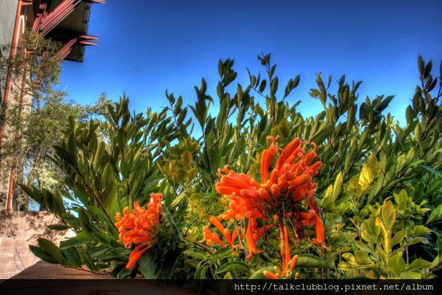 UCSD 10.jpg