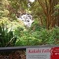 Rotorua-Hells Gates地獄之門地熱公園泥漿溫泉 (2).jpg