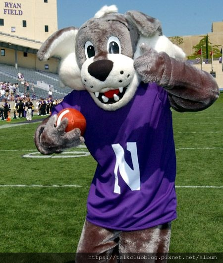 Northwestern_the Wildcat1.jpg