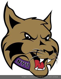 NYU_mascot_2.jpg
