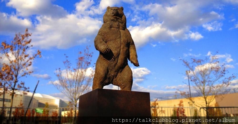 brown-bears_1.jpg