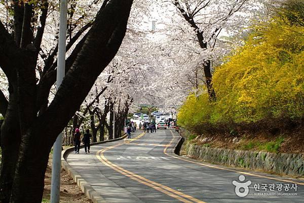 南山公園 (3).jpg
