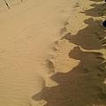 響沙灣騎駱駝 (6).jpg