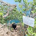 貝尼達島-恐龍灣 (24).JPG