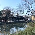 拙政園 (11).JPG
