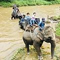 湄登大象學校-騎大象 (5).JPG