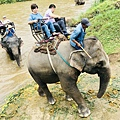 湄登大象學校-騎大象 (7).JPG