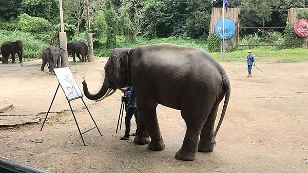 大象畫畫 (2).JPG