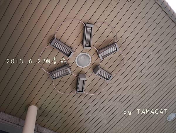 快到青森車站,抬頭一望 挑高兩三層樓的天花板上,一朵朵六瓣花綻放著。