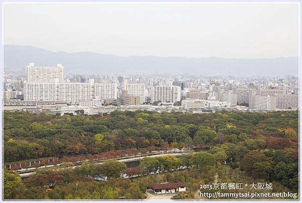 2013大阪20131117-005.jpg