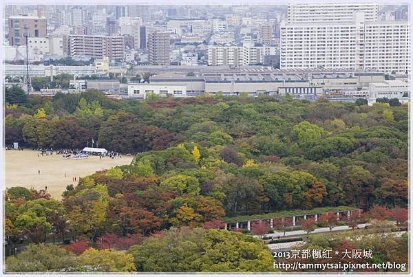2013大阪20131117-012.jpg