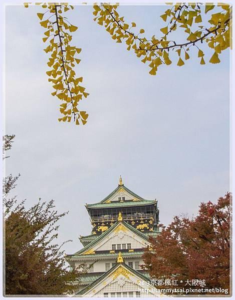 2013大阪20131117-013.jpg