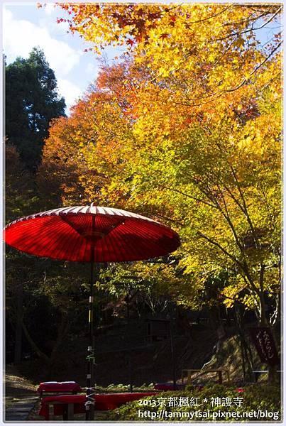 2013神謢寺IMG_1437.jpg