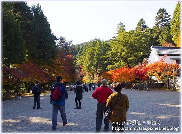 2013神謢寺IMG_1447.jpg