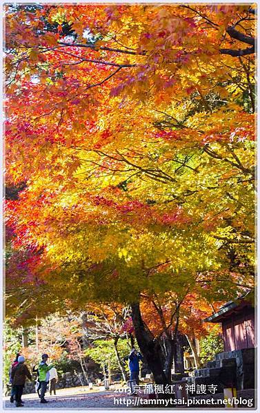 2013神謢寺IMG_1454.jpg