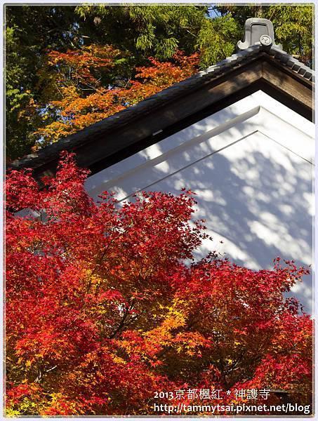 2013神謢寺IMG_1457.jpg