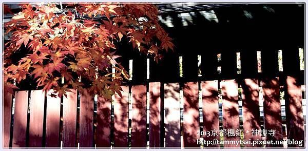 2013神謢寺IMG_1462.jpg