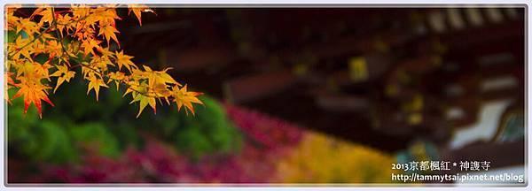 2013神謢寺IMG_1495.jpg