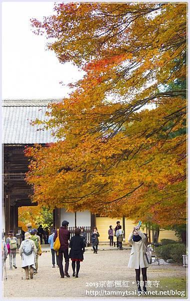 2013神謢寺IMG_1521.jpg