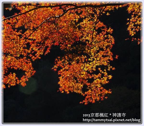 2013神謢寺IMG_1554.jpg