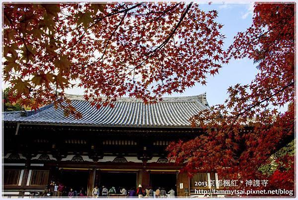 2013神謢寺IMG_14841.jpg