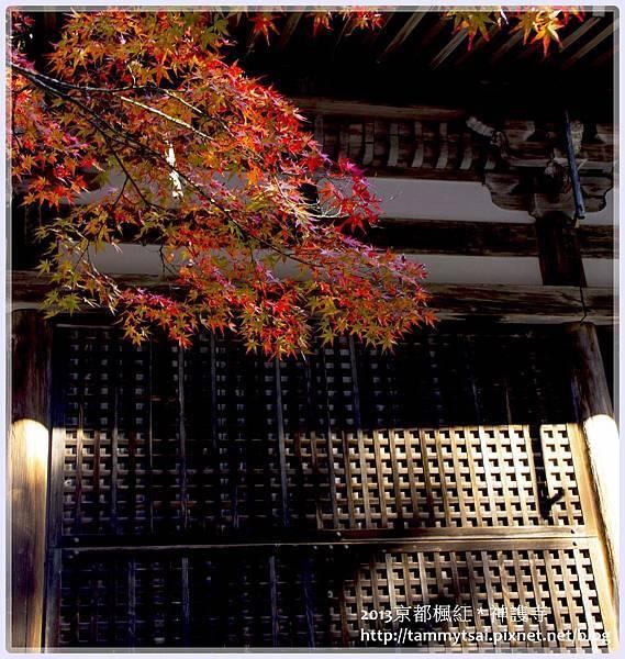 2013神謢寺IMG_14811.jpg