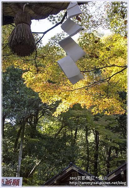 2013嵐山IMG_1382.jpg