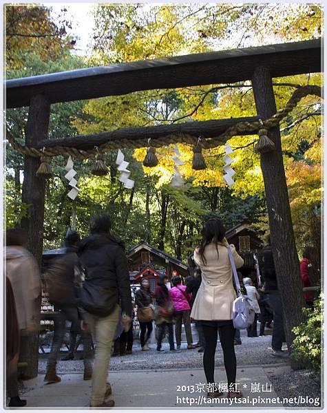 2013嵐山IMG_1384.jpg