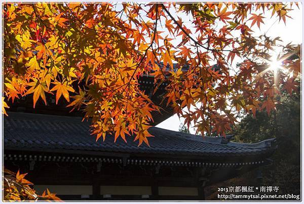 2013南禪寺IMG_1698.jpg