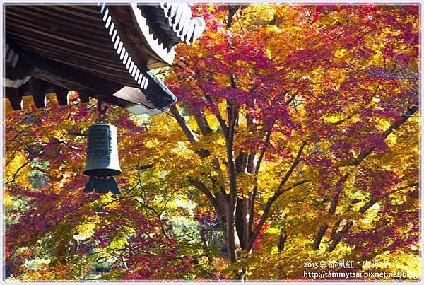 2013南禪寺IMG_1803.jpg