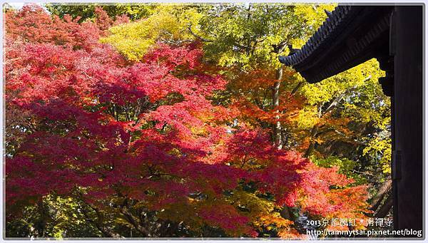 2013南禪寺IMG_1840.jpg