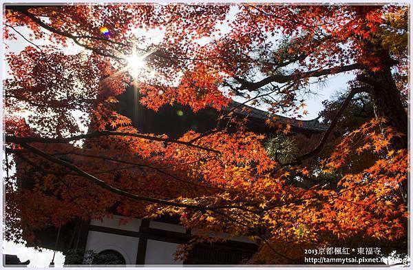 2013東福寺IMG_2556