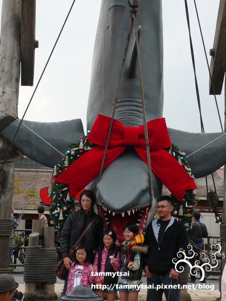 大白鯊.JPG