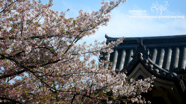 大阪城...JPG