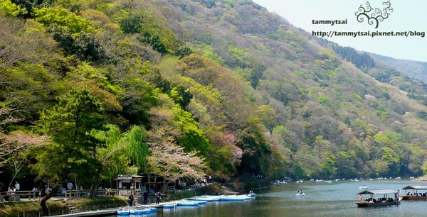 嵐山..JPG