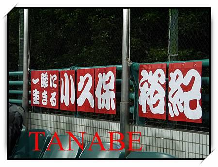2013baseball-3.jpg