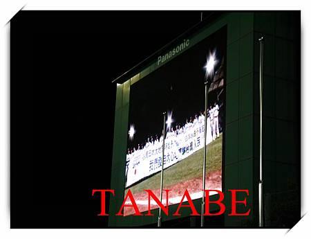2013baseball-9.jpg