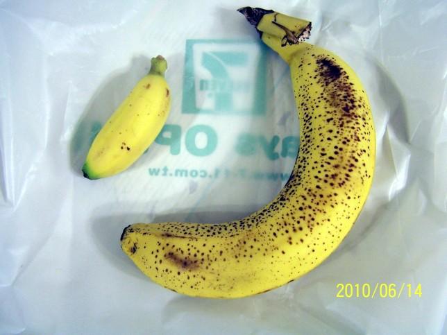 蛋蕉與香蕉644 100_5946.jpg