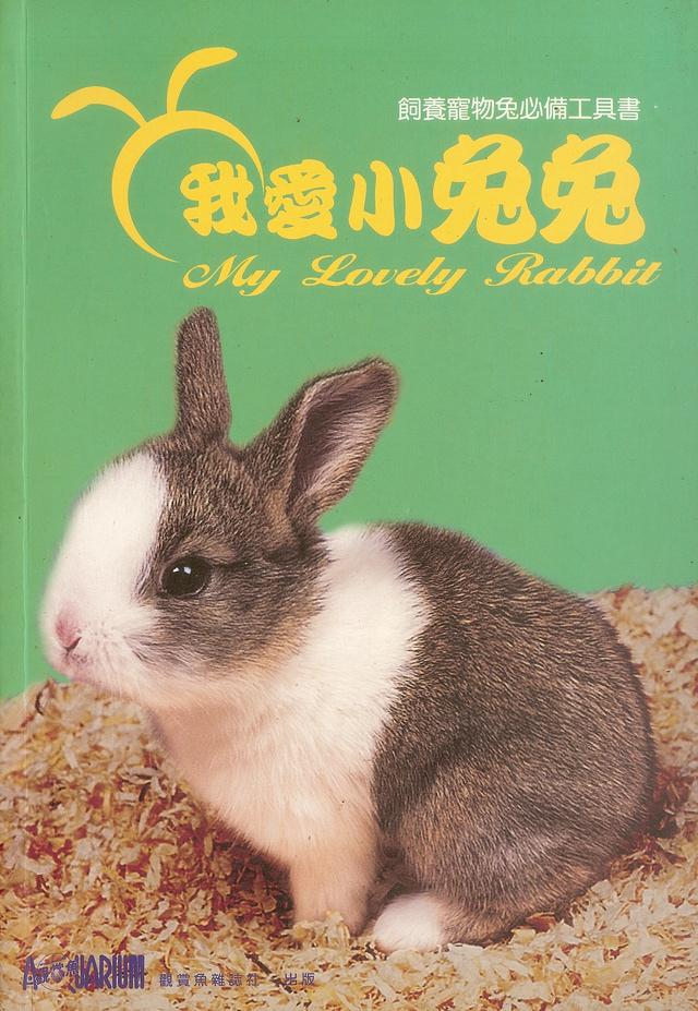 我愛小兔兔