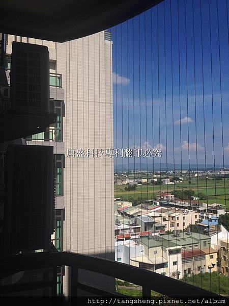 tangsheng-太子南科經典 (2).jpg