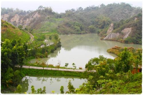 牛埔農塘 (9)