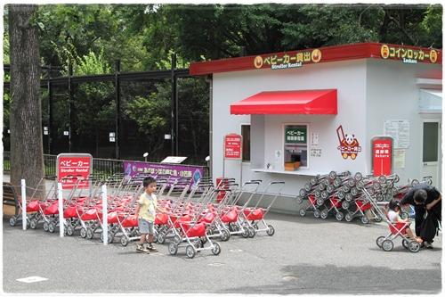 上野動物園 (5)