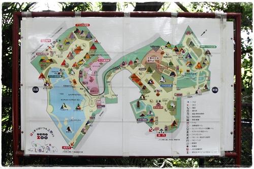 上野動物園 (22)